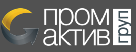 promactivgroup logo