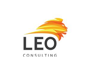 Leo Consulting